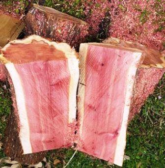Kerajinan dari batang Pohon – Membuat Wadah Buah