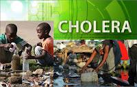 Cholera outbreak kills 12 in Adamawa, Nigeria