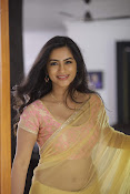 Neha Krishna Photoshoot-thumbnail-14