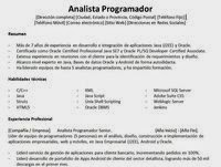Modelo De Curriculum Vitae Para Analista Programador La Oficina De