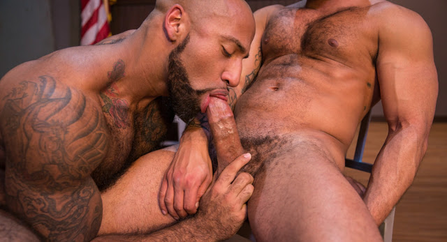 Raging-Stallion-Vice-DVD-Gay-Porn-Gayrado-Online-Shop