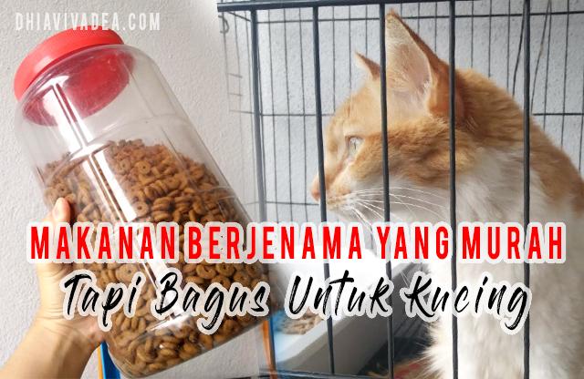 Apa Makanan Kucing Berjenama Yang Murah Tapi Bagus Dhia Vivadea