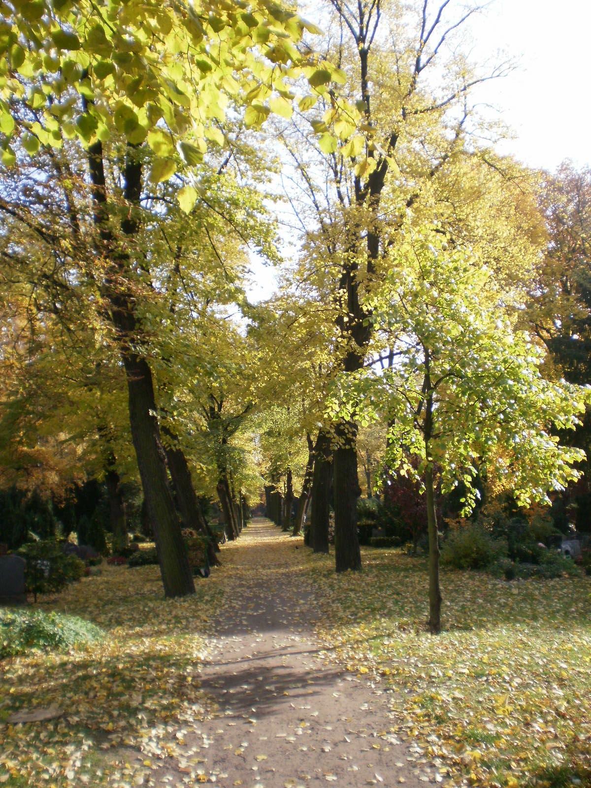 tutto musei Cimitero degli Invalidi Invalidenfriedhof