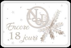 Le Noël blanc de DCS - 7