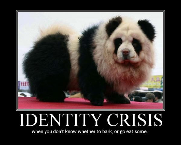 Funny Image Clip Funny Animal Demotivational Posters
