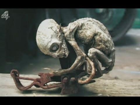 Creepy Humanoid Creature Found In Mexico