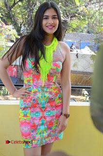 Telugu Actress Prasanna Stills in Short Dress at Inkenti Nuvve Cheppu Press Meet Stills  0093.JPG