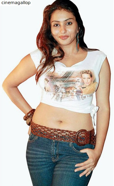 Namitha navel picture
