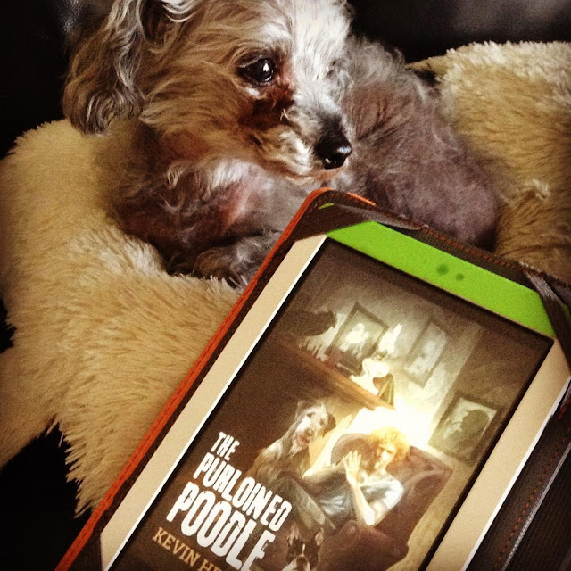 A fuzzy grey poodle, Murchie, lies on a cow-shaped pillow. Propped up against the pillow is a white Kobo in a grey and orange case. It has the cover of The Purloined Poodle on its screen, featuring a red-haired white man seated in an armchair. A large grey Irish Wolfhound and a smaller black and white Boston Terrier sit to either side of him.