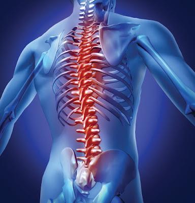 http://chennaibrainandspine.com/spinal-cord-tumor.html