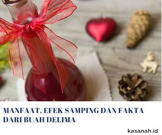 cuka buah delima