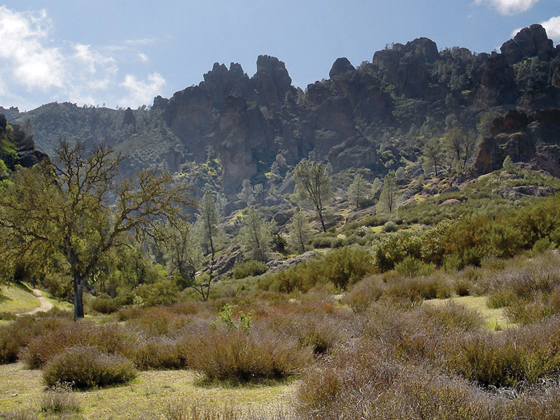 What Is A Chaparral Biome ?