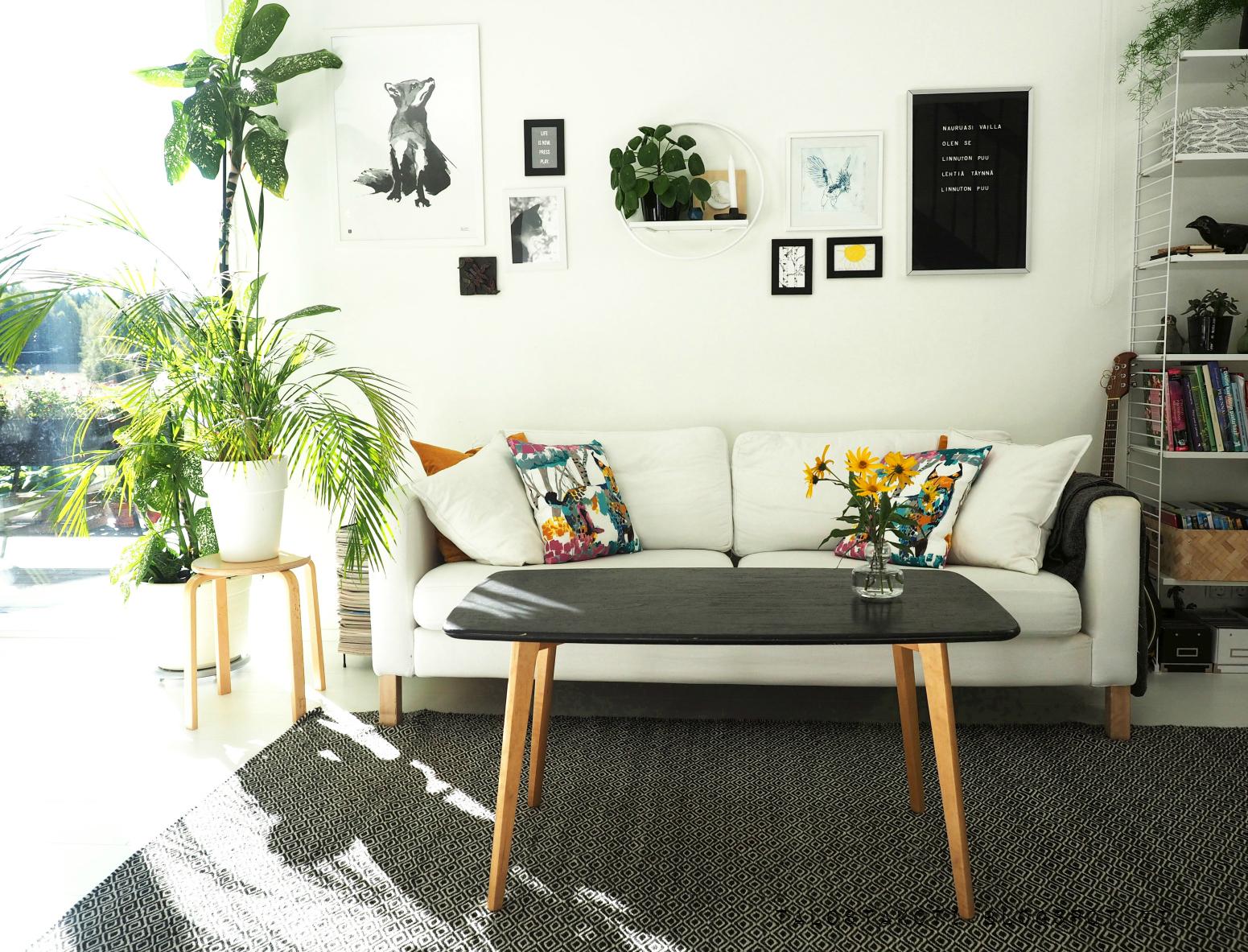 Olohuone, taulukollaasi, sohva