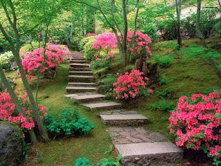 كتابة موضوع تعبير عن الطبيعة وجمالها