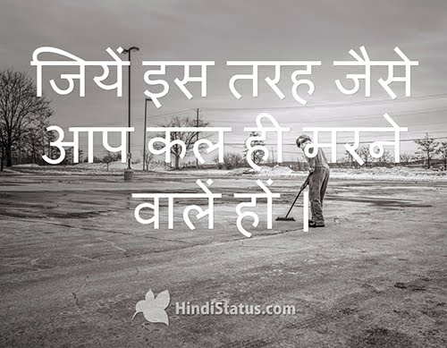 Live Like This - HindiStatus