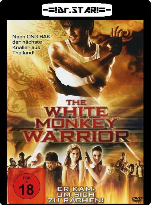 Hanuman The White Monkey Warrior 2008 Dual Audio BRRip 480p 300Mb