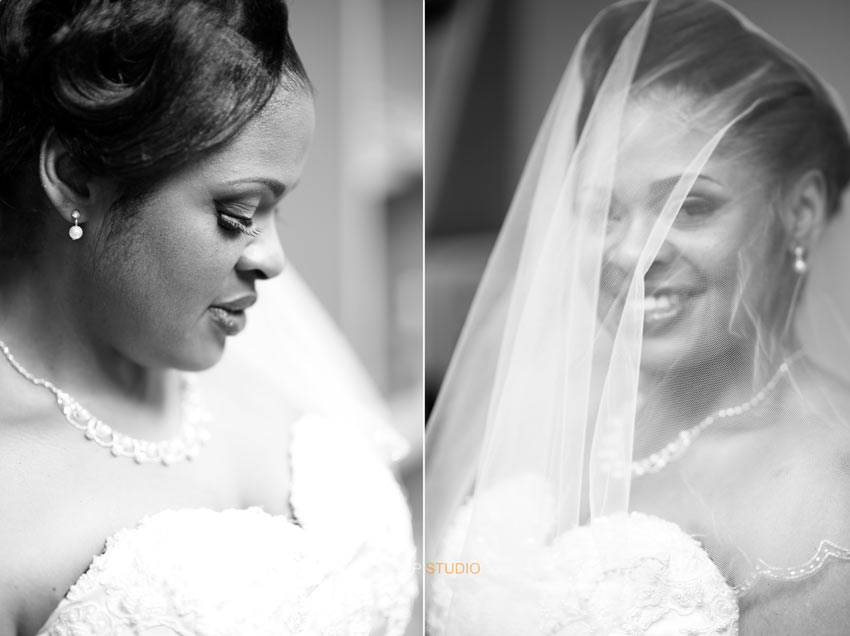 Ann Arbor Ypsilanti Wedding Photographer - Sudeep Studio.com