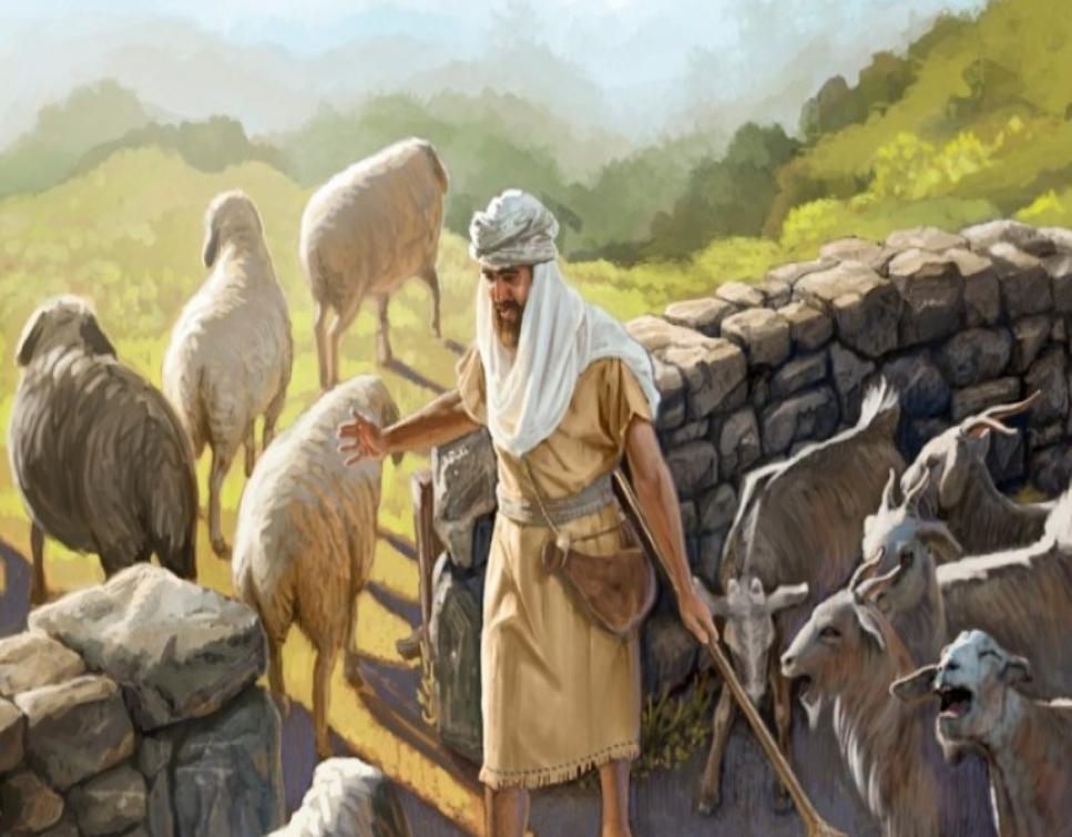 IL MIO AMICO GESÙ: Dal Vangelo secondo Matteo - Mt 25, 31-46 - Siederà sul  trono della sua gloria e separerà gli uni dagli altri.