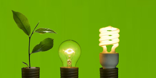 10 Products Idea To Become a Green Business