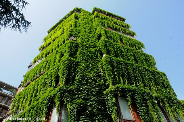 casa verde in via quadronno