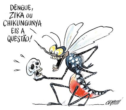 Projeto investiga a proliferação do Aedes aegypti em bocas de lobo na capital baiana