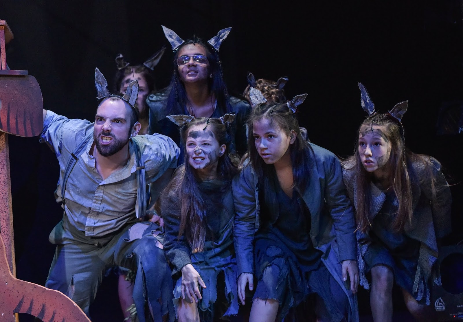 The wolf pack on stage at Derby Theatre