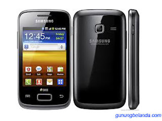 Samsung Galaxy Young Duos GT-S6312 Software Update