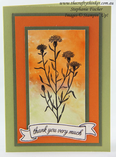 www.thecraftythinker.com.au, Watercolour Wash backgrouond, Wild About Flowers, #thecraftythinker, #stampinup, Stampin Up Australia Demonstrator, Stephanie Fischer, Sydney NSW