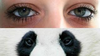 Cara Cepat Menghilangkan Kantung Mata Hitam (mata panda)