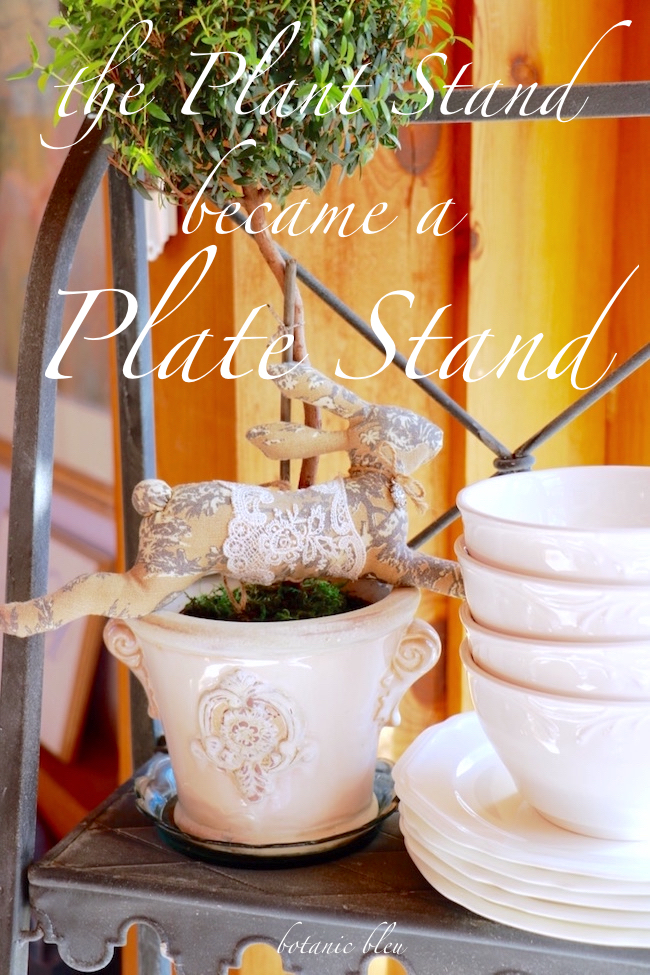 the-plant-stand-became-plate-stand