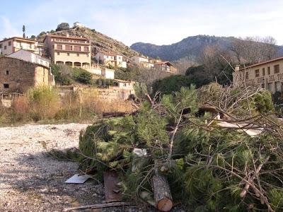 Sant Antoni 2009 fotos de Lluis Belsa 3