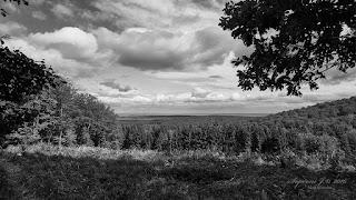Soproni-hegység (Farkas-árok) - háttérben a Fertő