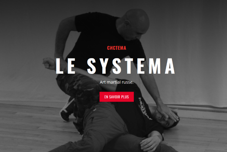 https://systema-amr.com/