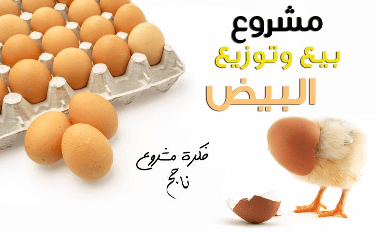 دراسه جدوي فكرة مشروع تاجر توزيع البيض 2019