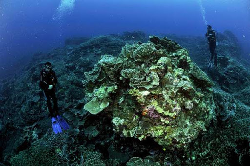 Banda Island is Considered to Be One of the Finest Diving Paradise on Earth
