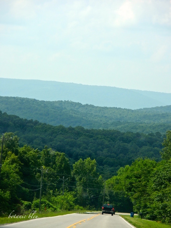 the foothills of the appalachian mountains The foothills of the appalachian mountains: off the beaten path in alabama's scenic paradise.