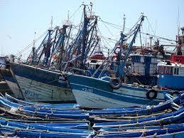 Nouveau protocole de pêche entre le Maroc et l'UE en cours de discussion