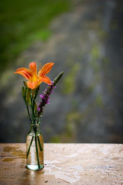 bouteille,fleurs,sauvages,et,jardin,faire,un,bouquet,blog,anthracite-aime,blogue