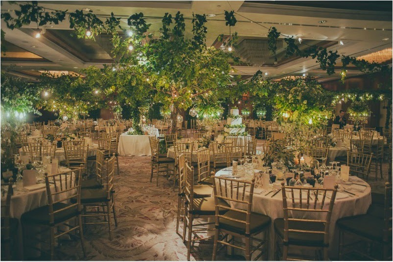 Mc wedding fernando edo decoration tearose entertainment jova musique wedding organizer shine photographer jakethomasphotographer junglespirit Image collections