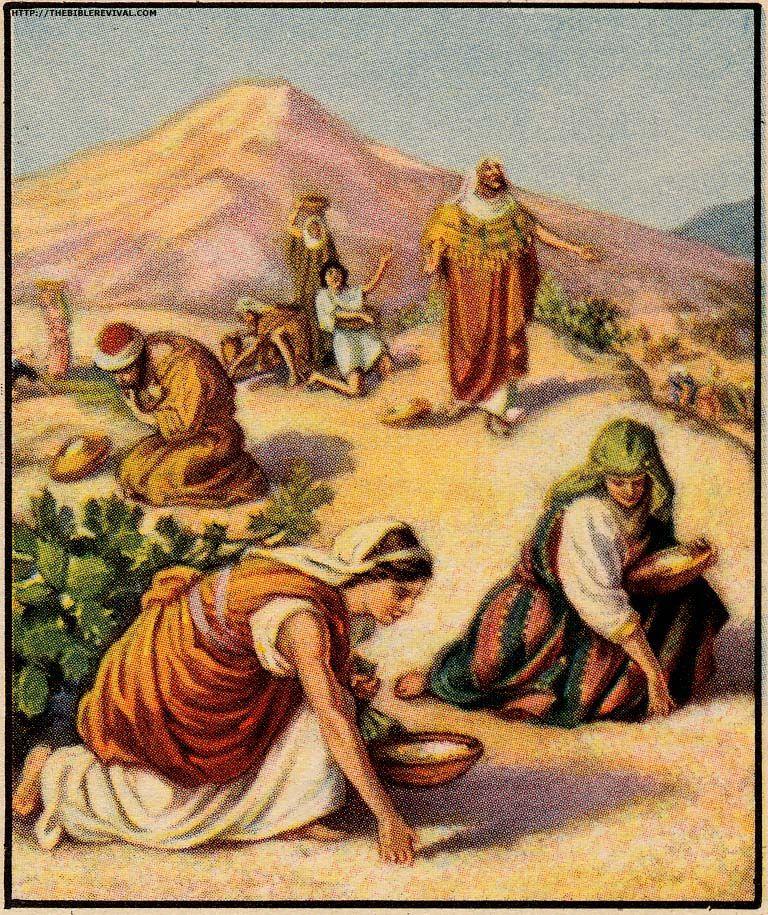 Biblical Mysteries: Manna