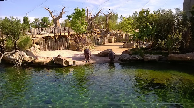 Zoo de beauval Loire Valley with children kids