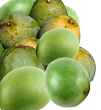 What You Need To Know About Bush Mango Seed