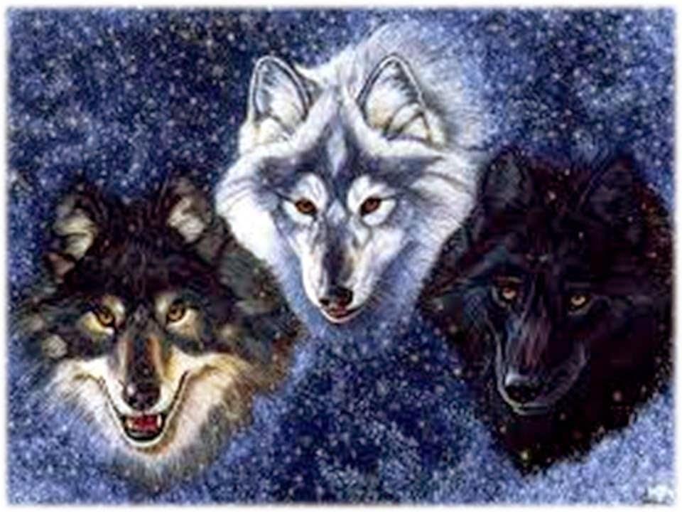 Resultado de imagen para ritual del lobo