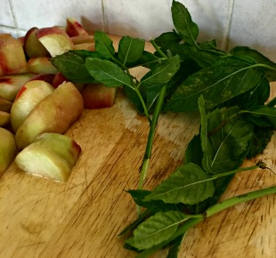 Wedges of peaches and mint for iced tea