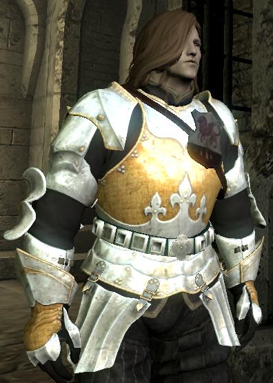 Skyrim Mods Highlights: Witcher 3 Toussaint Armor