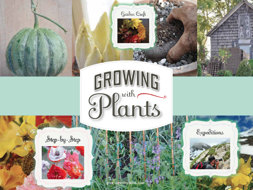 Growing with plants: WORKING WITH ME