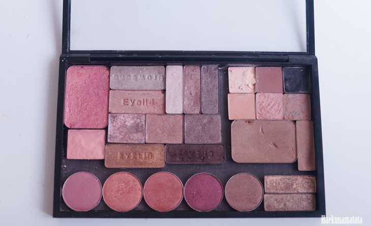 MAC Pro Palette Review / Everyday Makeup Palette