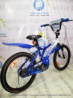 20 Inch Family Trinity BMX Bike