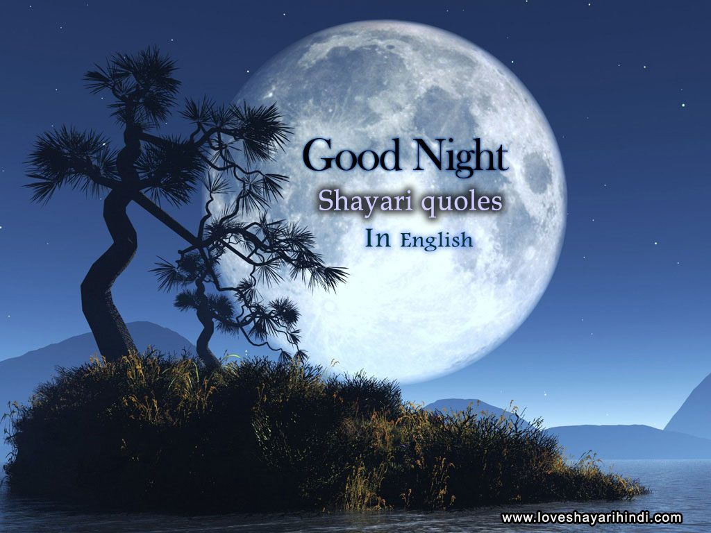 Top Good night English Shayari Quotes Images