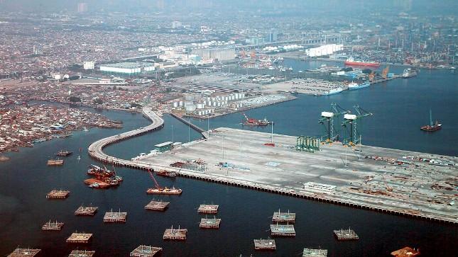 Lagi! Bukti Kerja Nyata Jokowi, Pelabuhan Kalibaru Rampung, Kapal Besar Tak Perlu Lagi ke Singapura